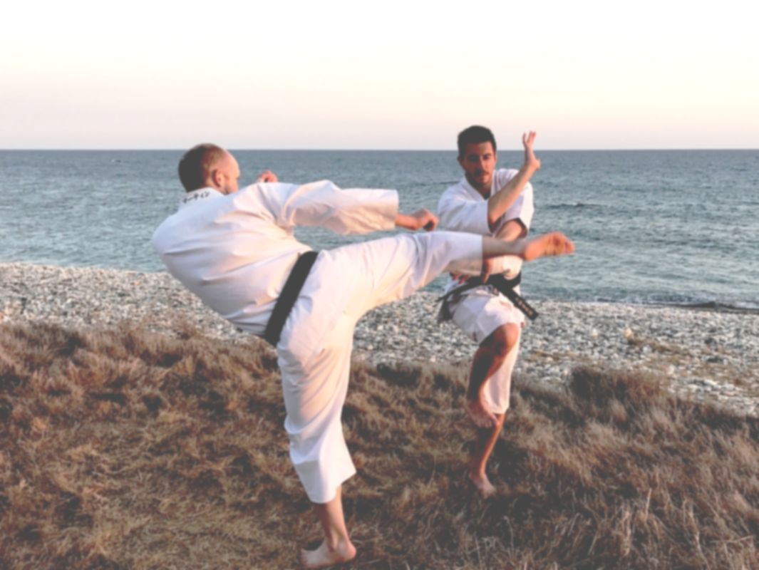 Shorinji kempo is a dynamic and practical martial art.